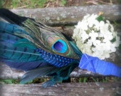 Christmas-Yuletide-Pheasant-Raven-Crow Medicine, Blue-Green-Smudge Fan, Handcrafted w Cruelty-Free Feathers-Blue Suede Sustainable Handle