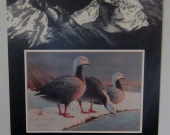 Vintage Alaska Poster Daniel Smith 1985 Alaska Waterfowl Conservation Stamp Signed by Artist