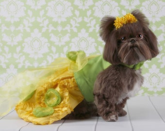 SAMPLE SALE:  Lemon & Lime Custom Party Dog Dress