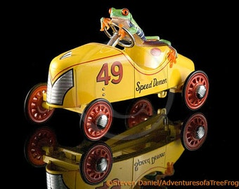 Racing Car Frog, Car Racing, Humor Photo
