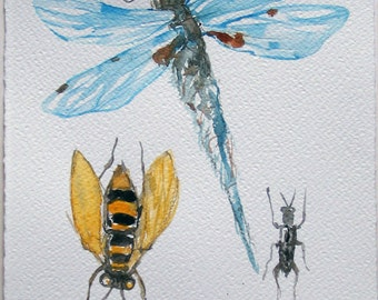 Dragonfly watercolor painting. Insect painting. Nature illustration. Watercolor original 7,5 by 11 inches. Bugs, insects painting