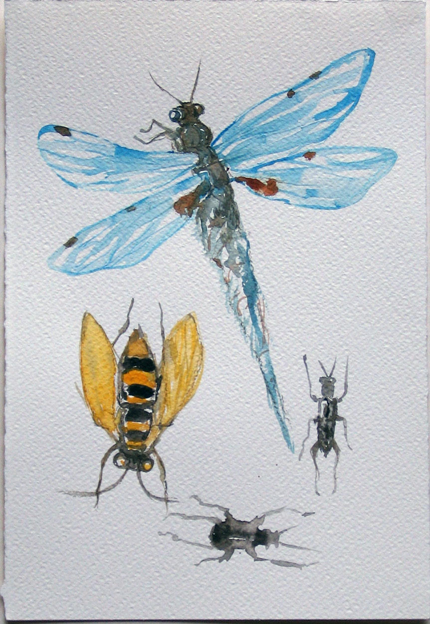 Dragonfly arts and crafts - Dragonfly Watercolor Painting Insect Painting Nature Illustration Watercolor Original 7 5 By