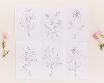 Botanical Print Set, Set of 6 Floral Prints