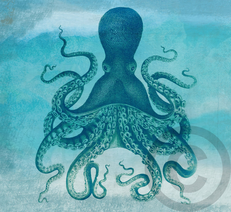 Digital Octopus Costal Original Wall Art Nautical Beach Decor