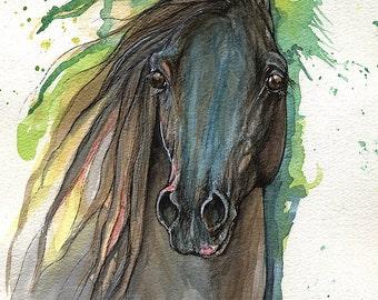 Black arabian horse original ink and watercolor painting