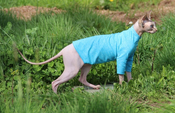 Pet Clothes Sun Protection Sphynx Cat Or Dog Clothes Long