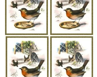 Vintage ROBIN BIRD in SNOW Framed Image Sheet - Digital Instant Download - winter nature avian songbird ephemera print collage supply