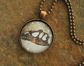 Dinosaur Allosaurus jimmadseni Skull Photo Pendant