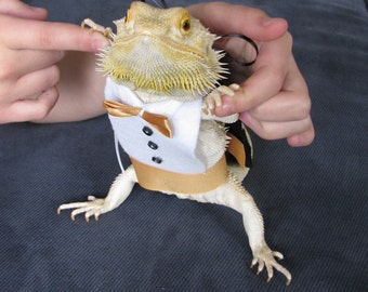 Tuxedo & Matching Top Hat for your Bearded Dragon! Different colors, one size fits most.