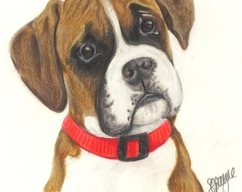 How To Draw A Boxer Puppy Dog Funny Quotes To Cheer Someone Up Cute