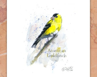 American Goldfinch signed giclee print