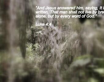 Luke 4:4