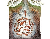 Ant Colony Print, giclee art print, reproduction watercolor, insects in nature, ant hill illustration