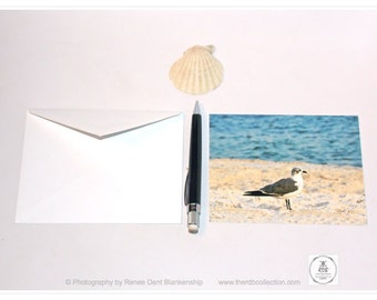 Seagull Cards - Gulf Coast Postcards - Beach Photo Stationery - Seagull at the Gulf - theRDBcollection