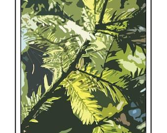 Redwood Poster, Occidental Poster, California Poster, Sonoma County Poster, Graton Poster, Room Decor, Original Artwork