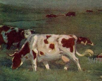 Cattle Ranch Estancia Uruguay A S Forrest 1910 Original Antique Watercolor Vintage Lithograph To Frame