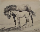 Vintage Original Charcoal Horse Drawing, 8 x 10