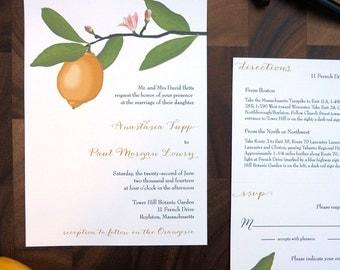 Anastasia lemon tree branch wedding invitation suite - sample