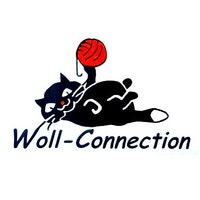WollConnectionTeam