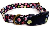 Field of Dreams - Organic Cotton CAT Collar Breakaway Safety - All Antique Brass Hardware