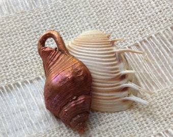 Copperclay Shell Focal by Catalina Glass