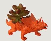 Orange Triceratops Office Desk Decor Birthday Gift