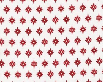 Michael Miller Fabrics, Firefly in Peppermint, yard