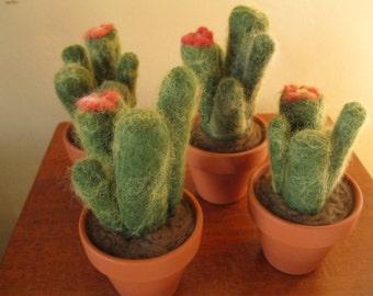 4 felted cactus pincushions/sculptures - Bulk Buy