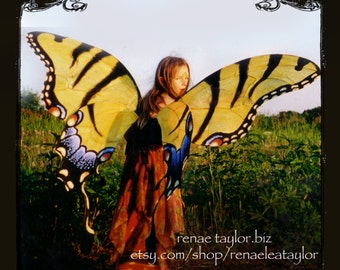 Custom Faerie wings by Renae Taylor  (Extra Large TIGER BUTTERFLY)