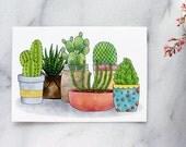 Succulents & Cacti Postcards - set of 4 . Cactus . Potted Plants