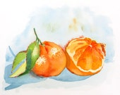 Citris Tangerine Art - Watercolor Print / Fine art / Kitchen decor / Fruit art / Gift for a gardener / Home and Living / orange  K