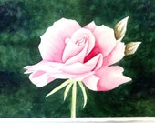 SALE Rose Pink Watercolor