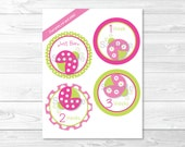 Cute Pink Ladybug Monthly...