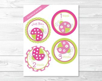 Cute Pink Ladybug Monthly Milestone Stickers / Ladybug Printable Onesie Stickers / Pink & Green / Iron Ons / Printable INSTANT DOWNLOAD