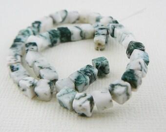 Gemstone Beads, Forrest Jasper Cubes, 4mm square bead Green, White, half strand beading supplies