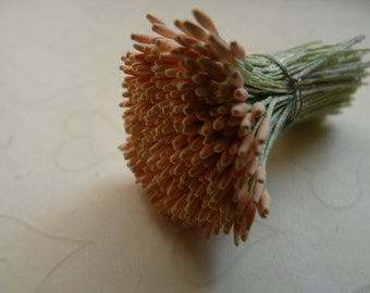 New Item -- One bundle of Pointed Matte Tips Floral Stamen in Peach color