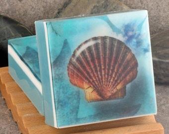 Graphic Art Soap Seashells IV in a Fresh Ocean Scent, Themed Glycerin Soap