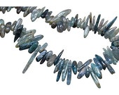 Polished Blue Labradorite Necklace