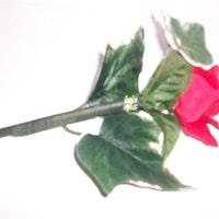 writingflowers4u