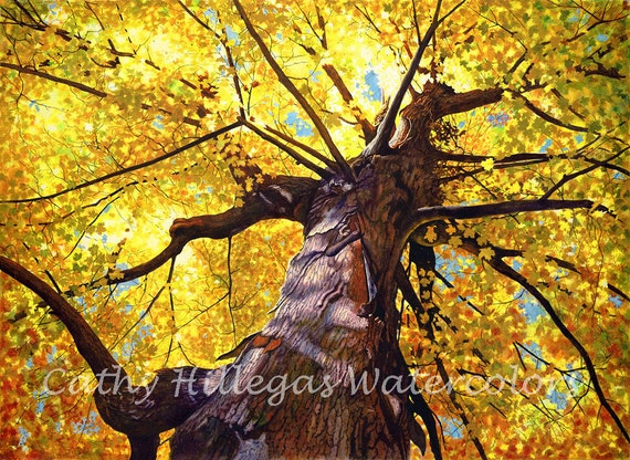Gold Autumn tree watercolor painting print by Cathy Hillegas, 12x16, watercolor print, gold, yellow, orange, blue, purple, brown, maple tree