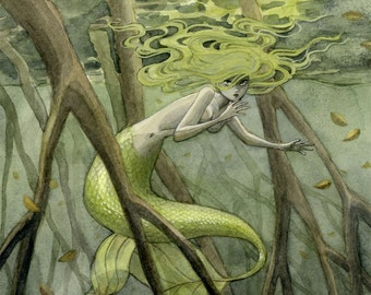 Mangrove Mermaid print - 8x10 or 11x14