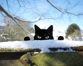 Peeping Tom Metal Garden Cat - Cat Ornament for Plant Pot, Lawn, Post or Fence