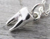 Tooth Necklace, Sterling Silver Tooth Charm, Human Molar Tooth Charm Necklace