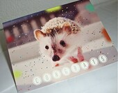 Congratulations Hedgehog Card - Charitable Item