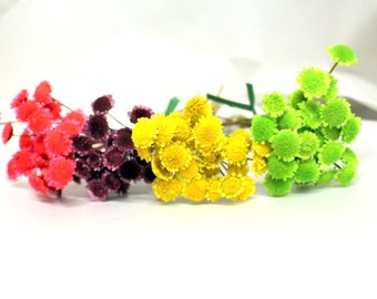 Margarita flowers-20+ stems-Dried Wedding flowers-pink-purple-yellow-green small flowers-Your color choice