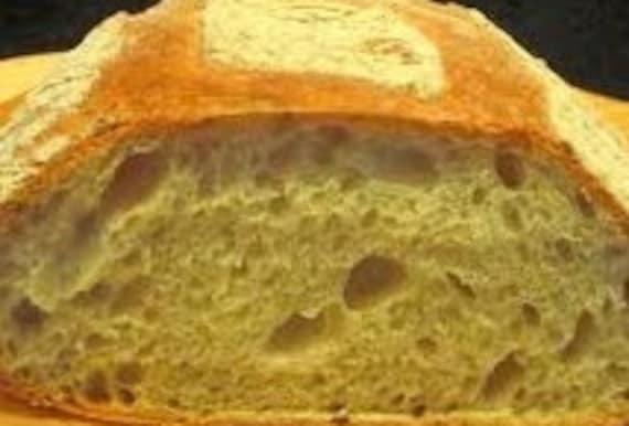 100 plus Year Old Alaskan Sourdough Starter (whole wheat)