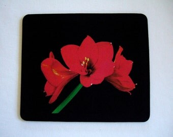 Red Amaryllis Flower Mousepad for Home or Office Dynamic and Impressive Gift for Her or Gift for Him