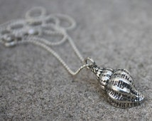 Morning Star Collection - Sterling Silver Mini Conch Shell Necklace