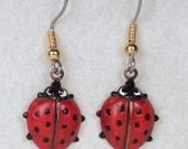 Red Ladybug Dangle Earrings w Gold French Ear Wire Hook, Light Weight Easy to Wear, Insect Earrings, Bug Jewelry, Red and Black Polka Dot