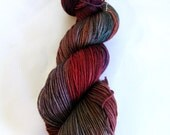 Superwash Sock Yarn 100g - Chromedome and Rewind
